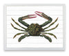 Framed Crab Print - Green Crab on Shiplap