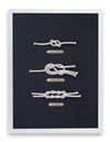 Framed Sailing Knots - Figure Eight Knot Series
