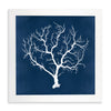 Framed Coral Print - Navy & White 2