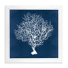 Framed Coral Print - Navy & White 3