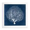 Framed Coral Print - Navy & White 4