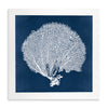Framed Coral Print - Navy & White 5