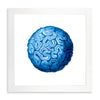 Framed Coral Print - Brain Coral in Blue