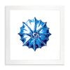 Framed Coral Print - Blue Series II