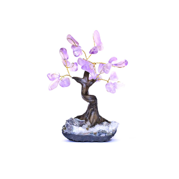 Amethyst Bonsai Tree - Small