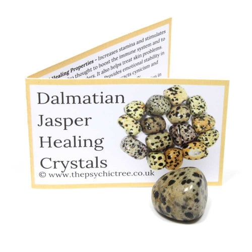 Dalmatian Jasper Crystal & Guide Pack