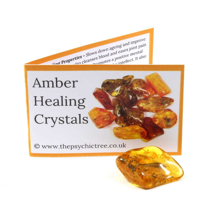 Amber Crystal & Guide Pack