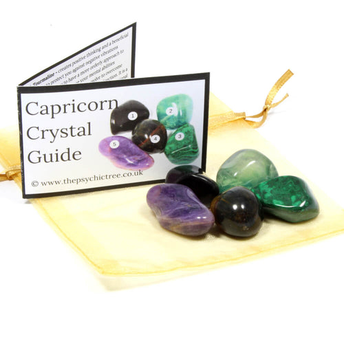 Capricorn - Sign Of The Zodiac Healing Crystal Pack