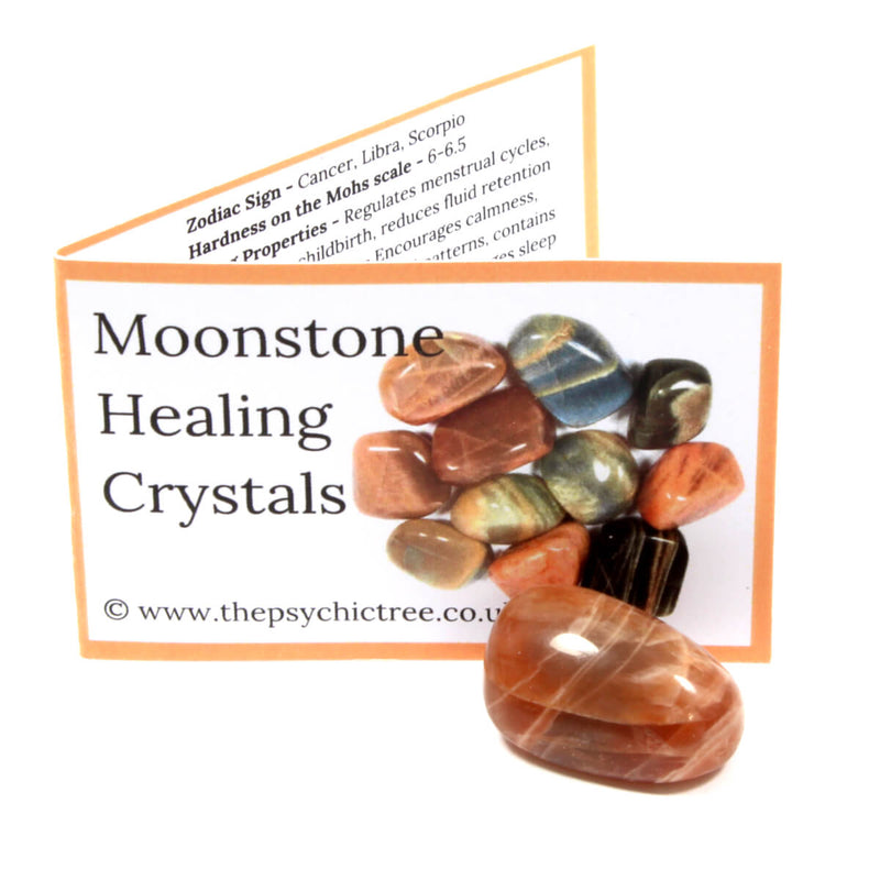 Moonstone Polished Tumblestone Healing Crystals (Small)