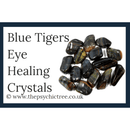 Blue Tigers Eye Guide Book