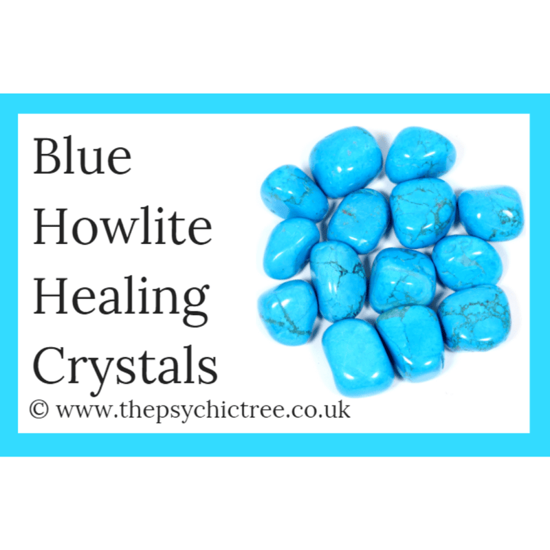 Blue Howlite Guide Book