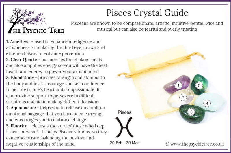 Pisces - Sign Of The Zodiac Healing Crystal Pack