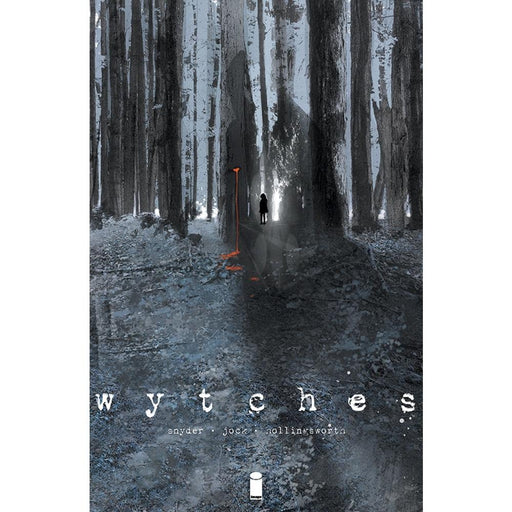 WYTCHES VOLUME 1 TPB - Books Graphic Novels