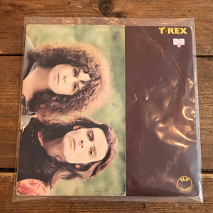 Robbie- T. rex - self titled
