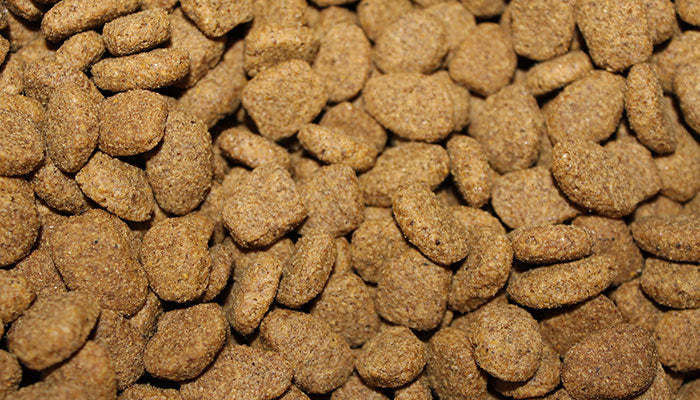 Human Grade Dog Food vs Feed Grade Dog Food