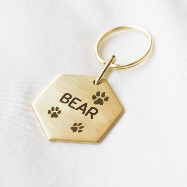 Solid Brass Dog ID Tag - Coin #202