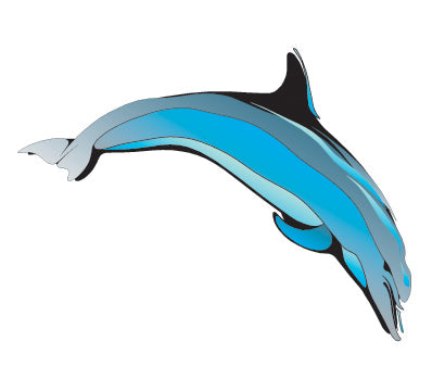 PAPER TRANSFER DOLPHIN - PT-DOLPHIN