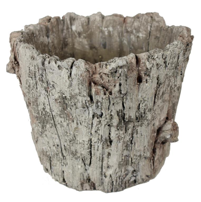 Cement Tree Bark Pot - Danielle D Rollins