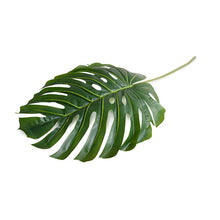 Monstera Leaf, Large