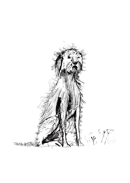 Sam Wilson Shaggy Dog Print