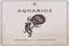 Aquarius Season Horoscope Predictions