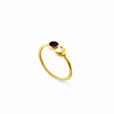 Tranquil Ebb and Flow - Amethyst Crescent Moon Gold Ring