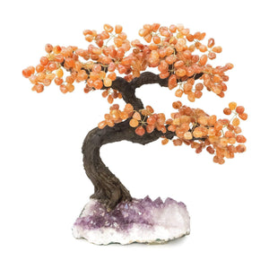 "Carnelian Bonsai Tree with Amethyst Base 19"" - 22"" - Karma and Luck 