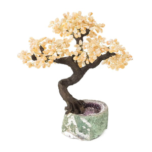 "Yellow Quartz Bonsai Tree with Amethyst Base 19"" - 22"" - Karma and Luck 