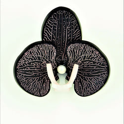 Pink on Matt Black Limited Edition Orchid Brooch LIMITED EDITION - MissJ Designs
