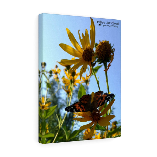 Butterfly Canvas Gallery Wraps