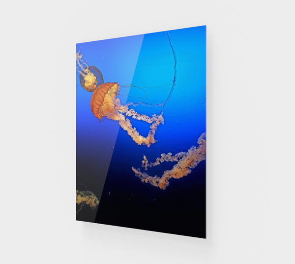 Dive in Deep Acrylic Print