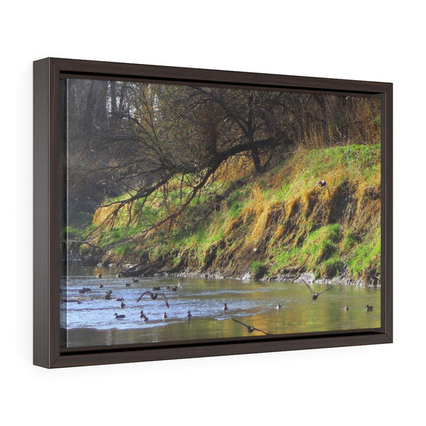 Ducks on the Water Horizontal Framed Premium Gallery Wrap Canvas