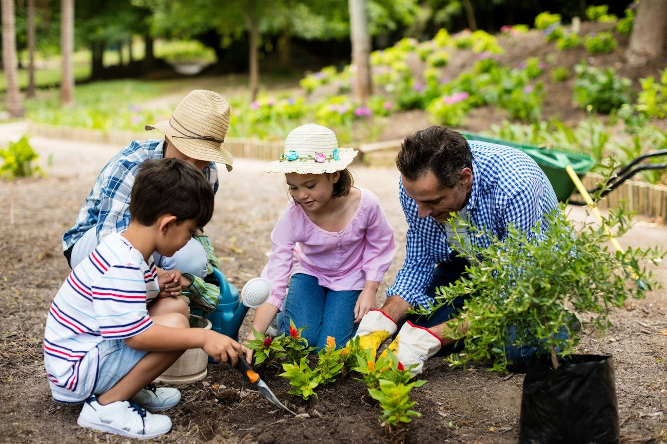 Benefits and Importance of Gardening with your family