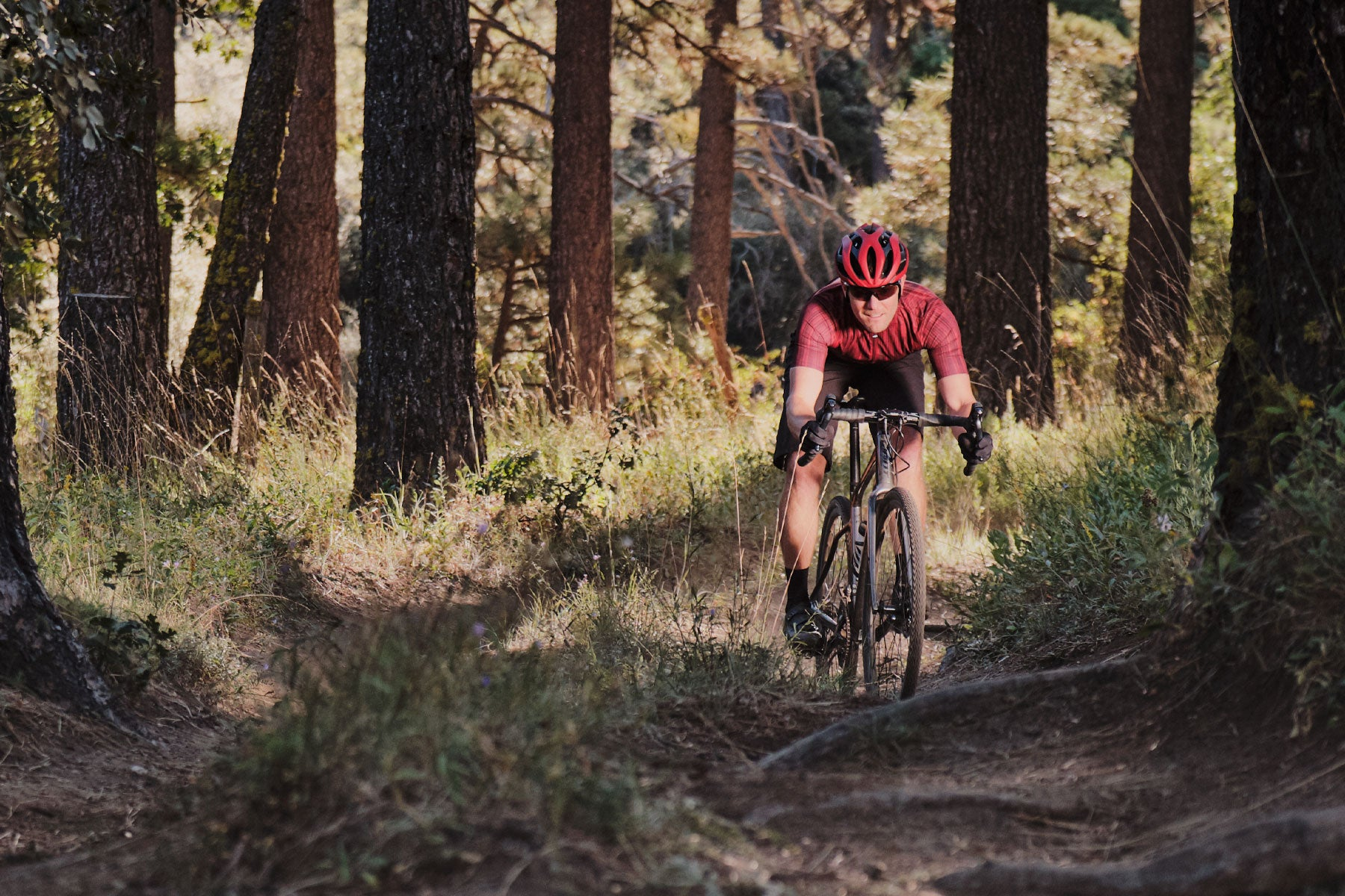 Affordable Giant Road Cyclocross Gravel Mountain Bikes