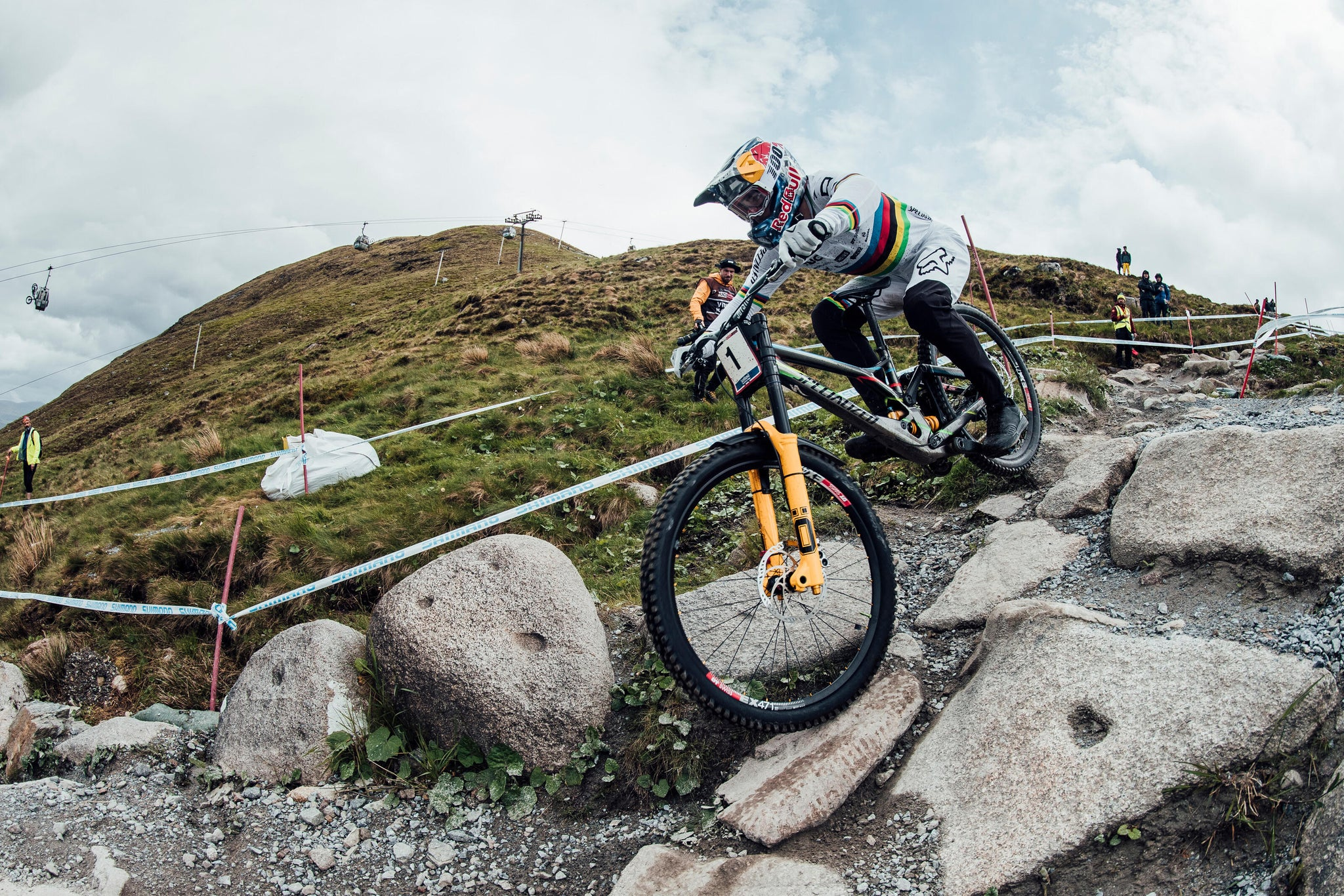 Loic Bruni Mullet Bike Downhill