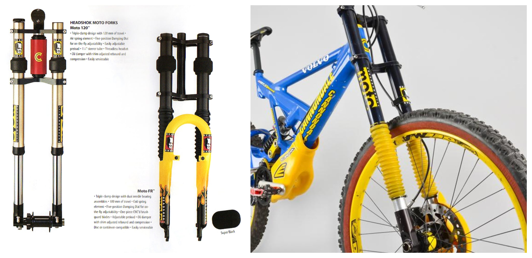 Cannondale Moto fork Fulcrum dh