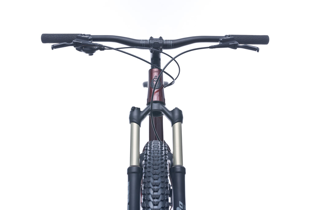 Salsa Timberjack 29 NX1 Large Bike - 2017