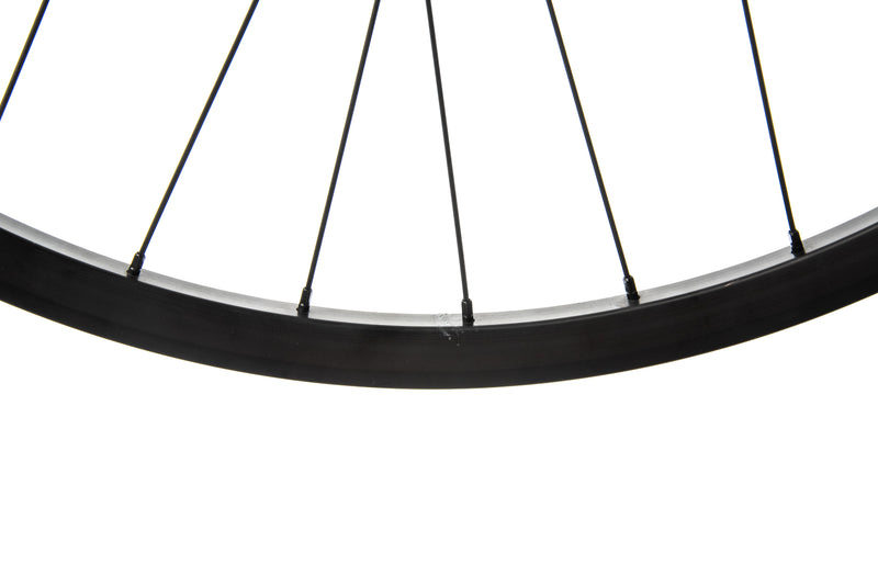 "SUNringle Helix SL TR25 Aluminum Tubeless 29"" Rear Wheel crank"