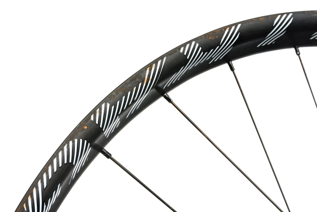 "Bontrager Line Plus Aluminum Tubeless 29""+ Front Wheel detail 2"