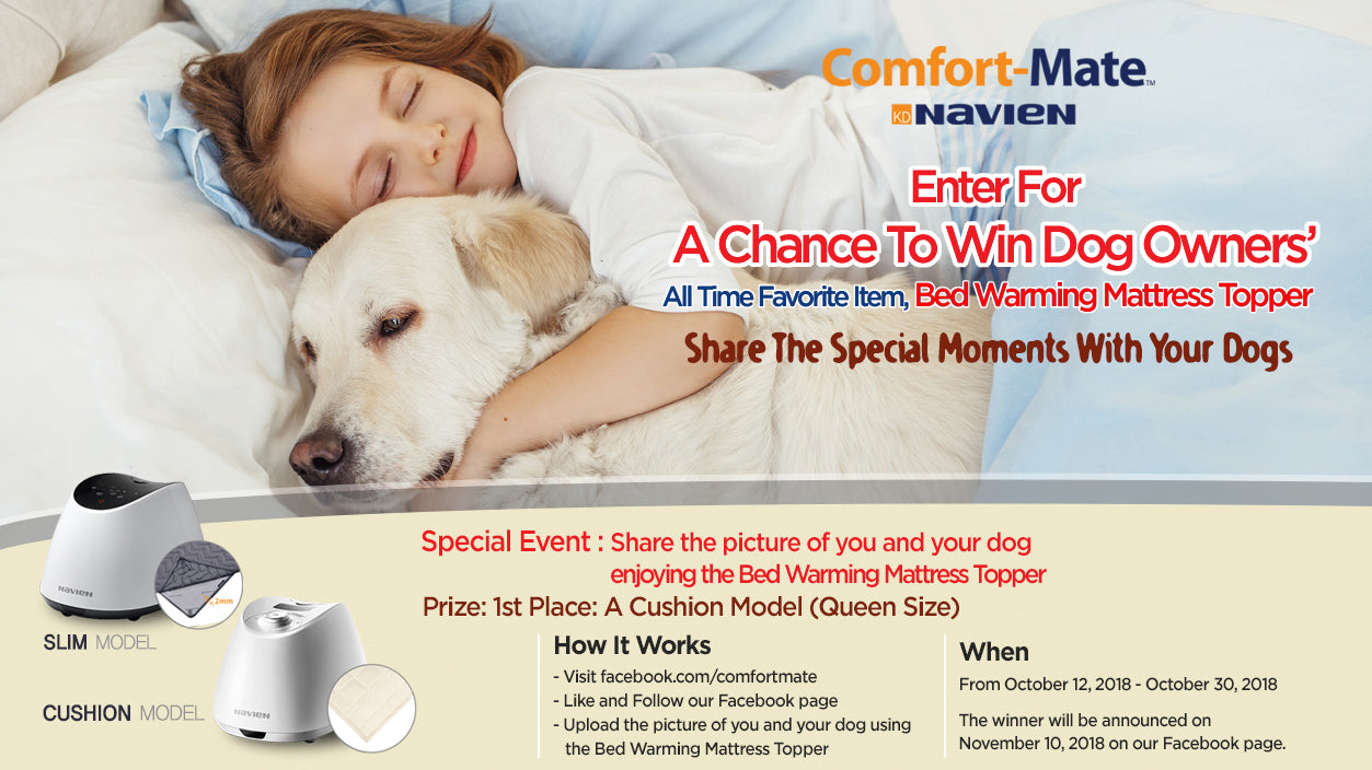 Share The Special Moments With Your Dogs