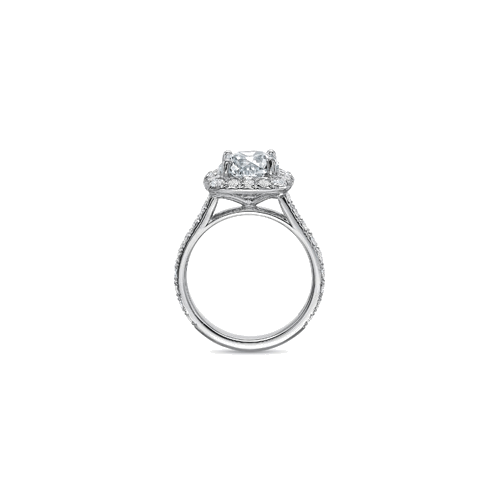 New Aire Halo Platinum Setting