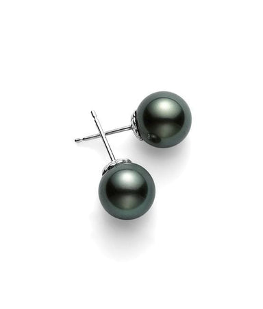 "Black South Sea Stud Earrings ""A+"""