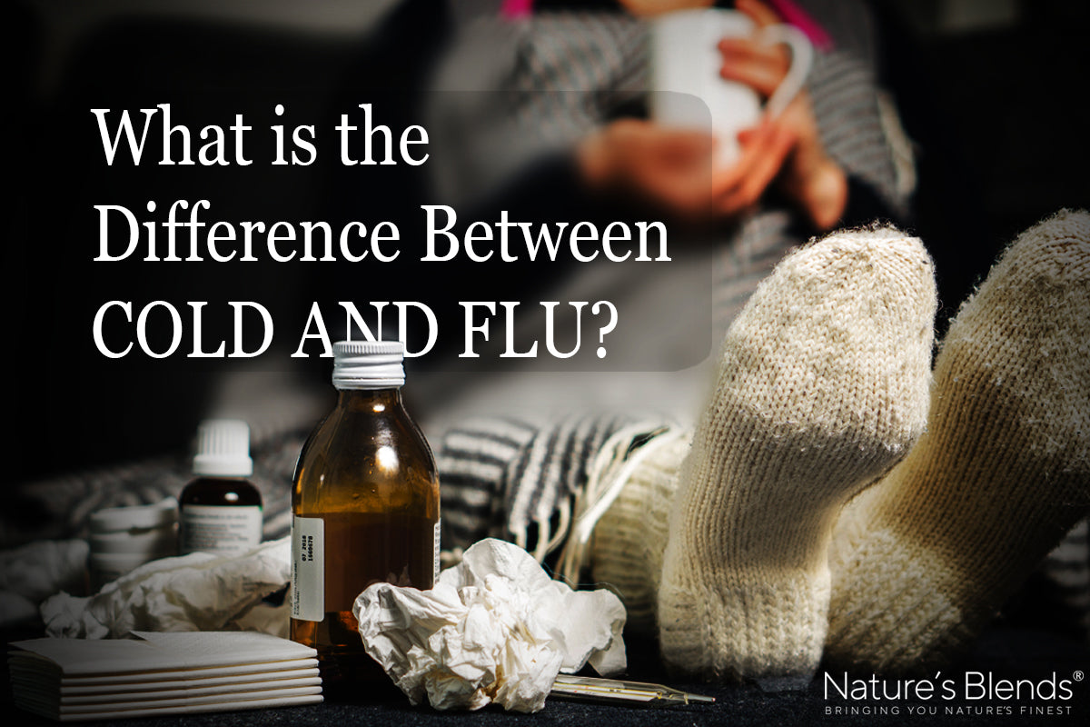 What is the difference between a cold and flu