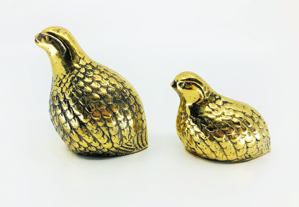 Brass Partridge Qualil Birds
