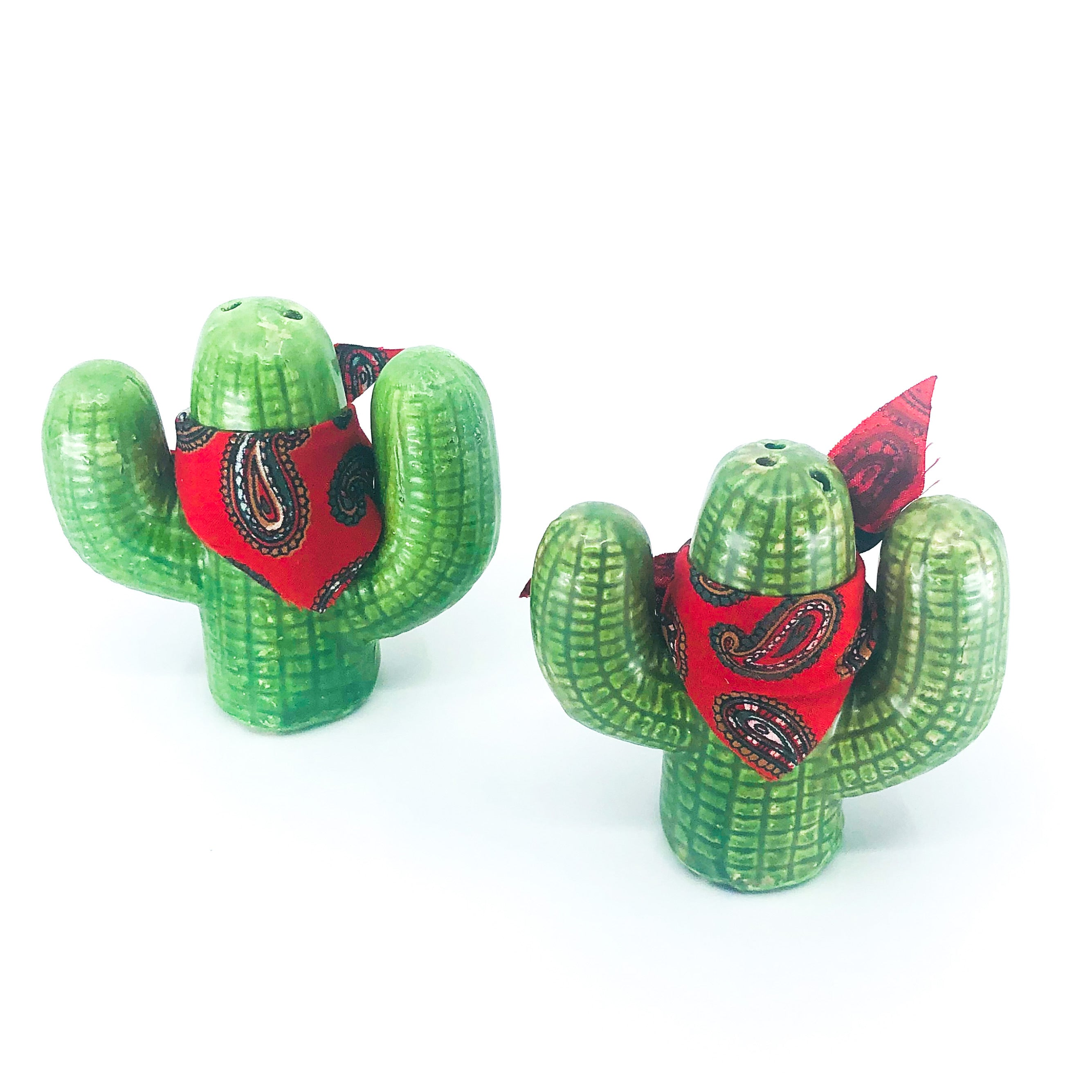 Vintage Pair of Cacti with Bandanas, Salt & Pepper Shaker