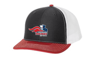 Softball 2020 Hat
