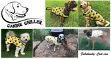 Canine Chillers - PVA Cooling Vest for Dogs XXL