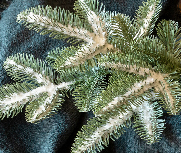 Frosted Blue Spruce Spray