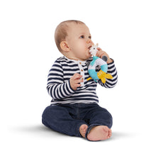 Shake & chew rattle NEW!