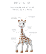 Sophie the giraffe – NEW BOX | New style guide